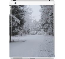 Icy Wonderland iPad Case/Skin