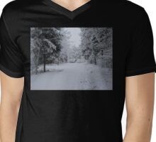 Icy Wonderland Mens V-Neck T-Shirt