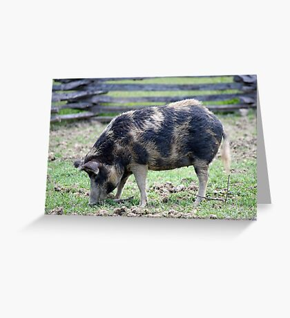 ... and Bacon Greeting Card