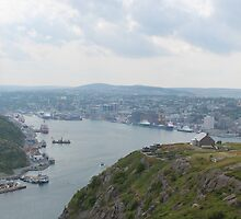 St John's, from Signal Hill by Durandal7