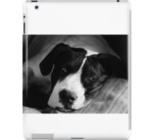 Black and White Pup iPad Case/Skin