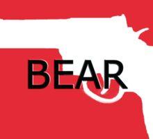 USA- WE BEAR ARMS- 2nd Amendment Sticker