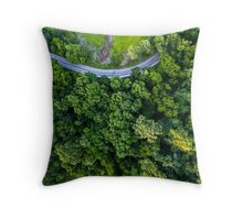 Top Down - Roads and Forest Throw Pillow
