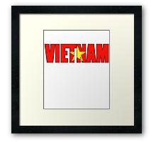 Viet nam Flag Framed Print