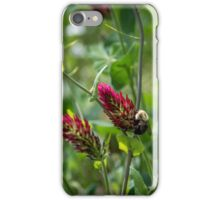 Red Clover Bumble Bee iPhone Case/Skin
