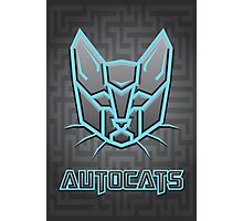 Autocats Transformers Photographic Print