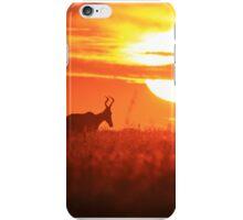 Red Hartebeest - Free and Golden - African Wildlife iPhone Case/Skin