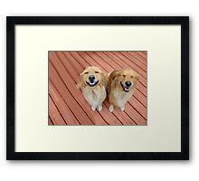 ✿♥‿♥✿   U Sure Do Crack Me UP ..THANKFUL FOR ANIMALS OUR PETS THAT MAKES US SMILE✿♥‿♥✿    Framed Print