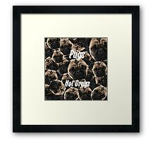 Pugs, Not Drugs Framed Print