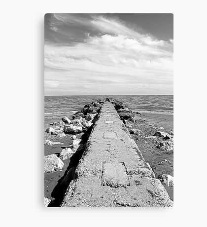 sea and beach Canvas Print