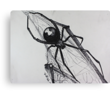 Black Widow Canvas Print
