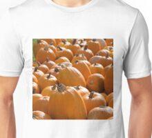 Pumpkins 12 2 Unisex T-Shirt