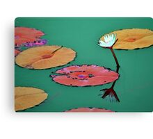 Abstract waterlily pond Canvas Print