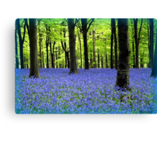 Haze Of Blue Canvas Print