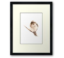 Bird Sparrow Watercolor Painting Drawing Image Picture Poster Framed Print