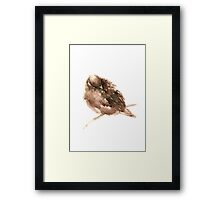 Brown Bird Animals Sparrow Watercolor Painting Image Poster Framed Print
