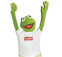 Kermit Happy Photographic Print