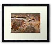 Rusty Fire Pit Framed Print