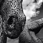 KELPIES by leonie7