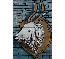 Goat mural Graffiti detail on the textured wall Photographic Print