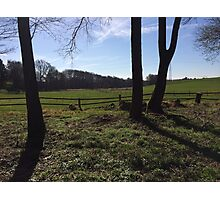 Nice natural view into the field in blue sky sunshine Photographic Print
