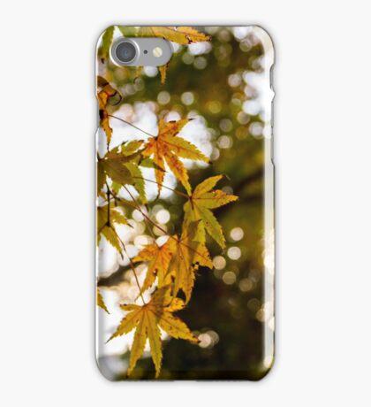 momiji leaves in autumn iPhone Case/Skin
