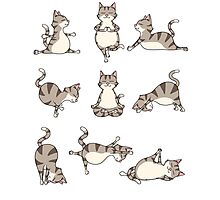 Funny Yoga Cat Position Meditation Relax Hatha Basic T-Shirt Photographic Print