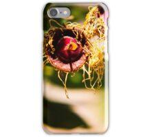 Australian Bush Plants iPhone Case/Skin