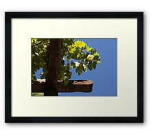 Harvest in the Sky Framed Print