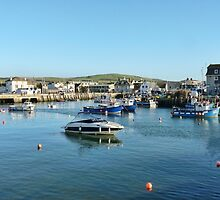 West Bay Harbour by lynn carter