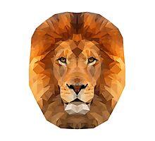 Geometric Lion Face Photographic Print