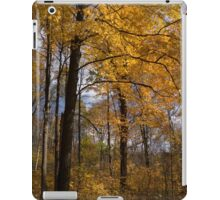 Golden Leaves and Dark Branches - Autumn in the Forest iPad Case/Skin