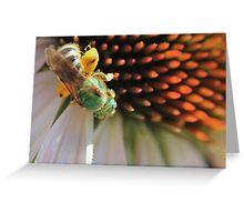Green Bee Macro Greeting Card