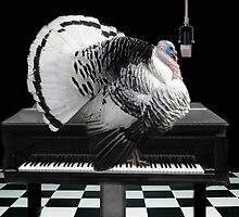 *•♪♫•*TURKEY TOM SINGING-COLD TURKEY HAS GOT ME ON THE RUN*•♪♫•* by ✿✿ Bonita ✿✿ ђєℓℓσ