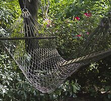 hammock in the garden by spetenfia
