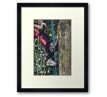 tree cutting Framed Print