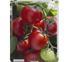 tomatoes in the garden iPad Case/Skin