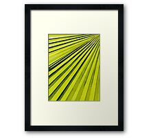 Green Palm Frond Framed Print