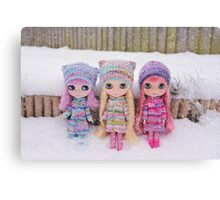 Blythes in the snow Canvas Print