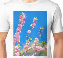 Beautiful pink cherry blossoms on a blue background. Sakura Unisex T-Shirt