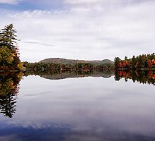 Autumn - Moose Pond by T.J. Martin