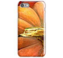 Giant Orange Pumpkin iPhone Case/Skin