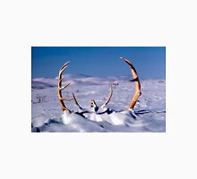 Caribou Antlers in The Snow  Unisex T-Shirt