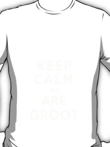 Keep Calm We Are Groot T-Shirt