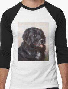 Newfoundland Dog Portrait Men's Baseball ¾ T-Shirt