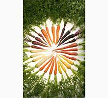 Carrot Color Wheel  T-Shirt