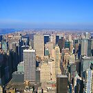 Manhattan New York City from Empire State Building  by Vitaliy Gonikman