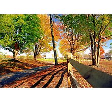 Autumn in Connecticut Photographic Print