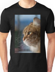 Cat whiskers in the sun Unisex T-Shirt
