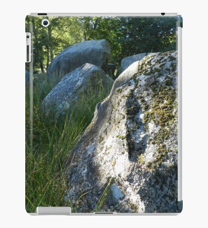 Neolithic Site on Falster iPad Case/Skin
